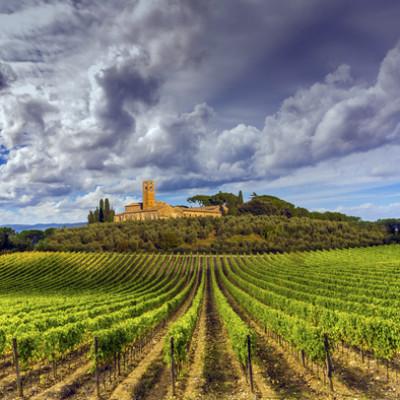 toscana_vinho